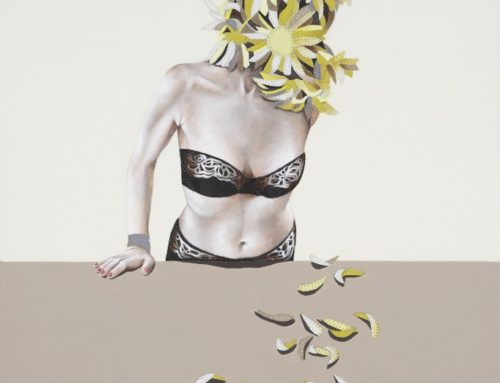Love Me Love Me Not (Chrysanthemums)